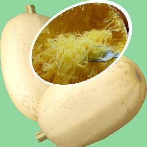 COURGE 'Spaghetti'